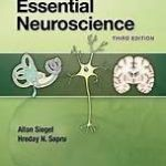 essencial neuroscience