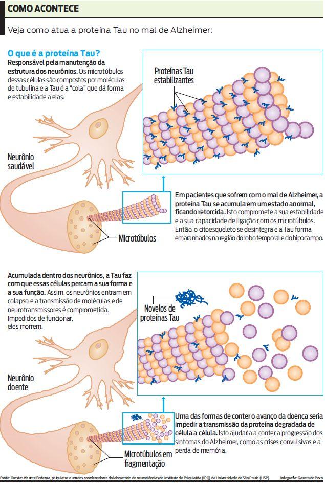 emaranhados neurofibrilares
