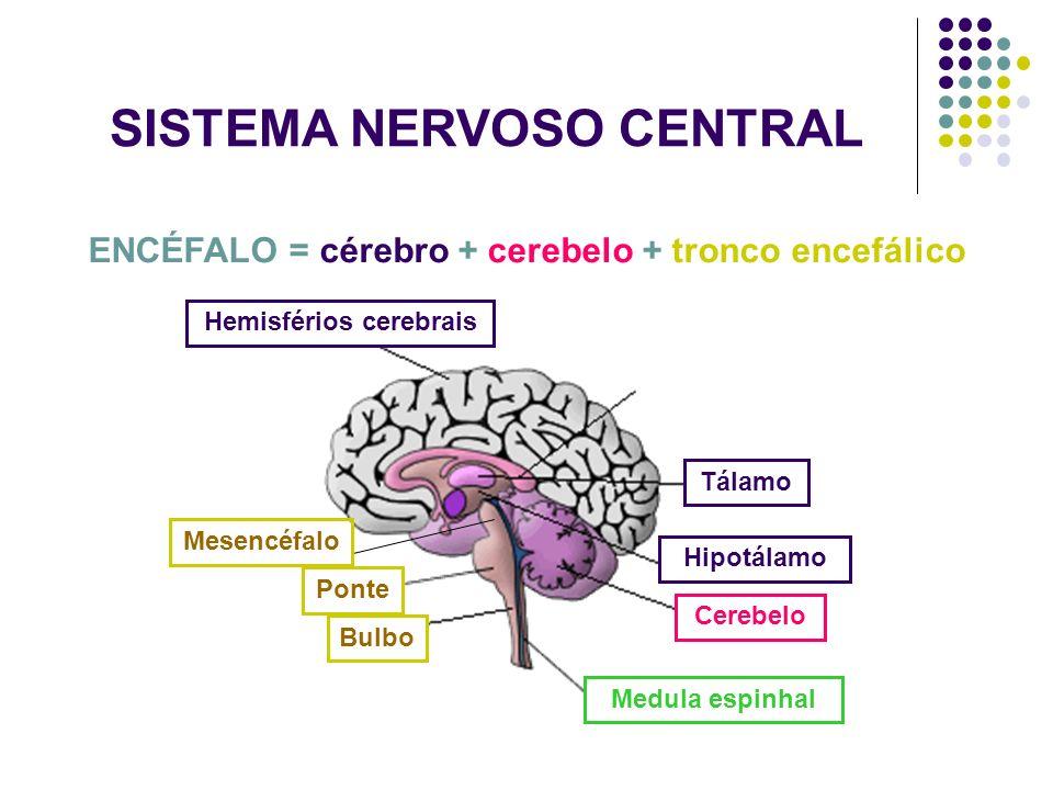 neuro-a