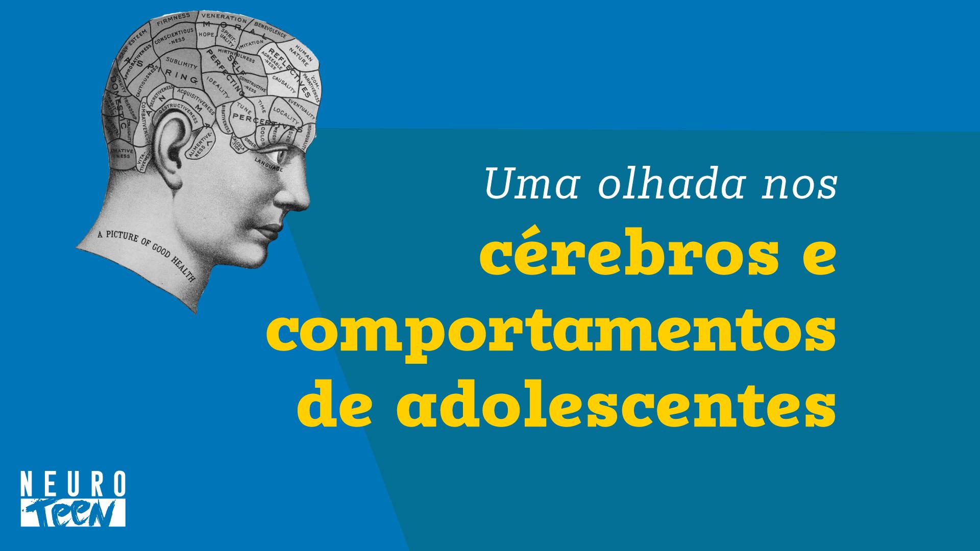 Uma olhada nos cérebros e comportamentos de adolescentes