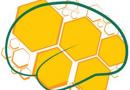 Olimpíada Brasileira de Neurociências (OBN)