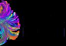 II Simpósio Brasileiro de Neurociências – 17 a 19 de julho de 2019